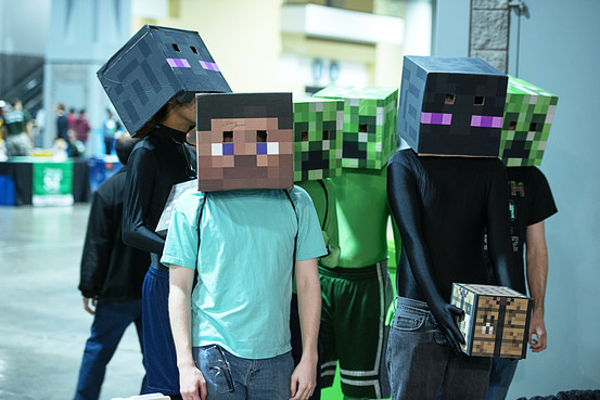 Minecraft Fans. Image via WSJ.com
