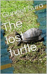 the-lost-turtle