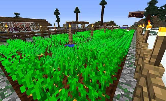 Minecraft Potato/Carrot Villager Farm